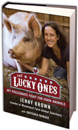 Book Review The Lucky Ones My Passionate Fight For Farm border=