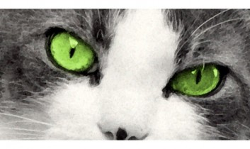 """Episode 42: """"An animal's eyes have the power to speak a great language."""""""