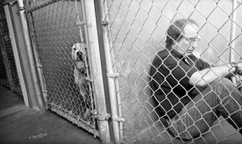 Animals on the Ballot, Activist in a Cage