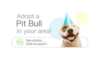 "Promote Companion Animal Adoption With ""Social PETworking"""