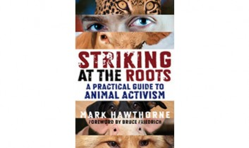 """Mark Hawthorne Asks, """"How Do Graphic Images Affect Animal Advocacy?"""""""