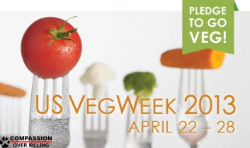 Even Already-Vegans Should Care About Go-Vegan Campaigns (Like US VegWeek 2013!)