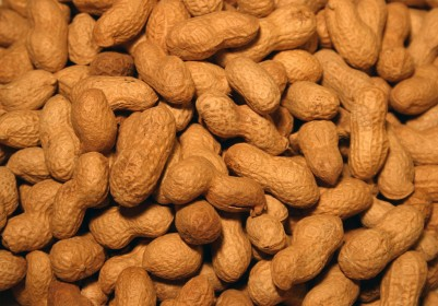 Peanut Butter for Vegan Advocacy (BONUS RECIPE: Curry Peanut Butter)