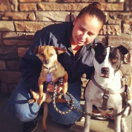 Judie, Melody, and Anastasia, as reported on the blog for My Dog is My Home