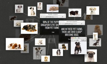 Faux Online Pet Store Exposes Puppy Mill Horror