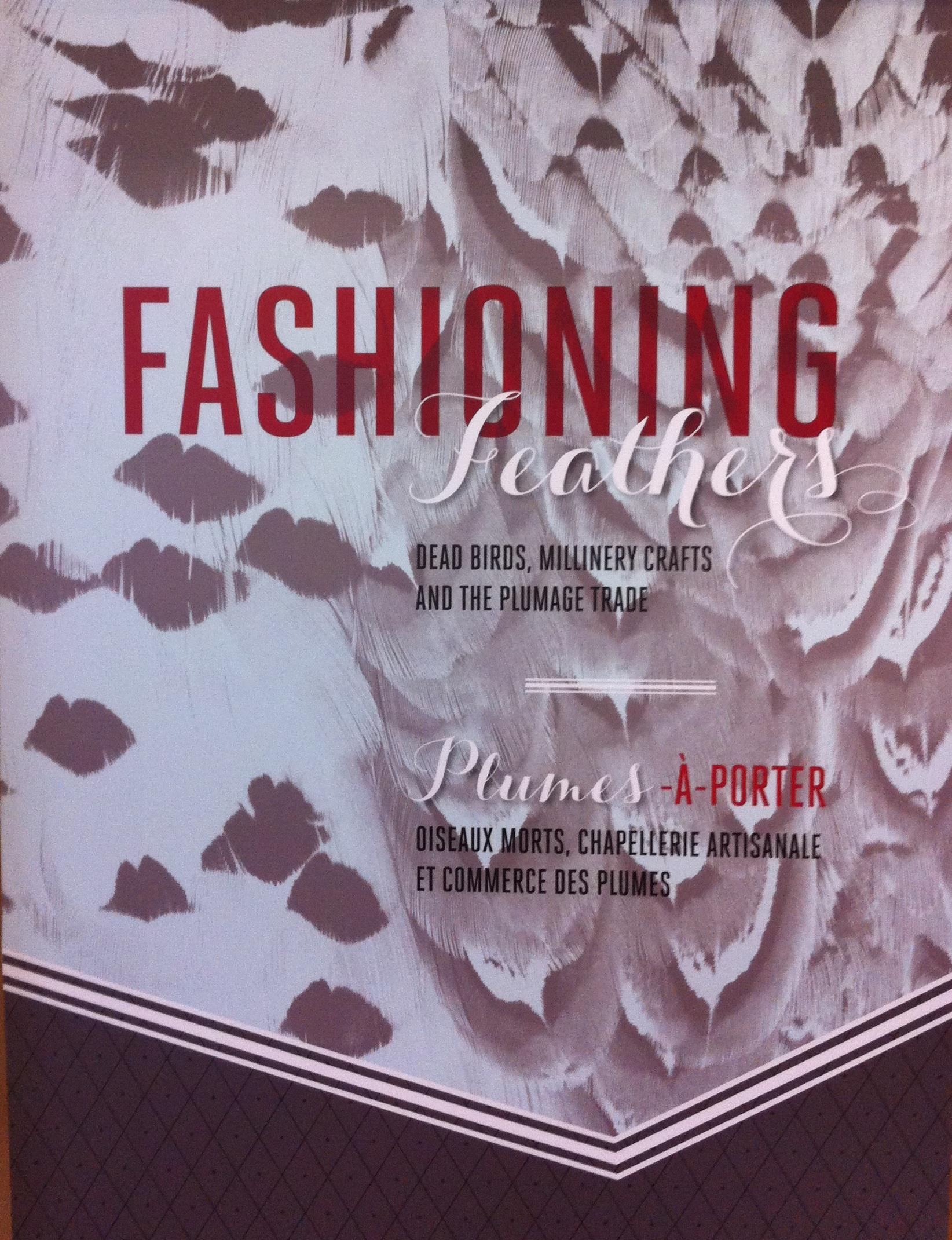 Fashioning Feathers3