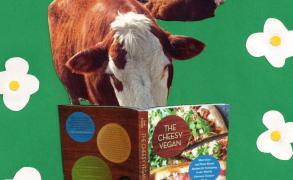 Tasty Activism: Extending the Hand of Compassion (BONUS: Recipes for Vegan Cheddar, and Vegan Cheddar Muffins)