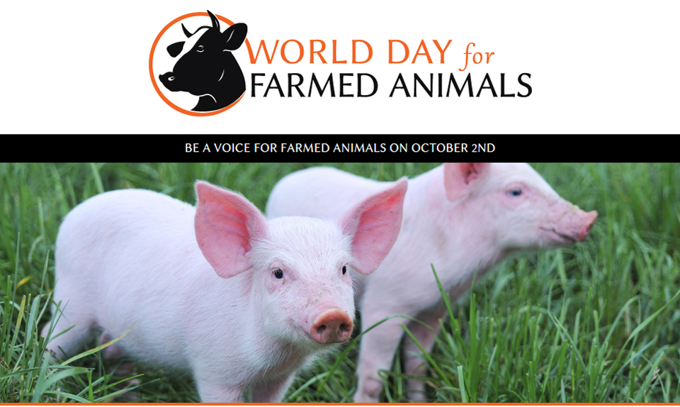"This Year, Make ""World Day for Farmed Animals"" a Day to Remember"