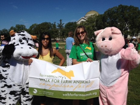 NicoleFeuerstein-WalkforFarmAnimals