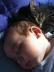 2009 0811 Finny & Zippy 2