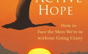 "Book Review: ""Active Hope: How to Face the Mess We're in without Going Crazy"" by Joanna Macy and Chris Johnstone"
