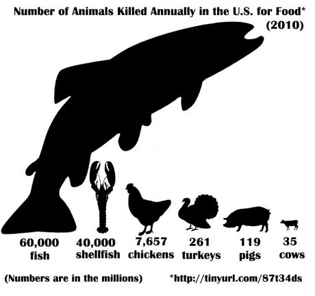 animalskilled_mary2