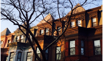 Park Slope Stoop: Photo of the Day: Bright Architecture