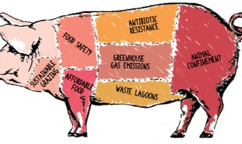 """Four Takeaways from """"The Meat We Eat: 2014 Forum on Industrial Animal Farming"""""""