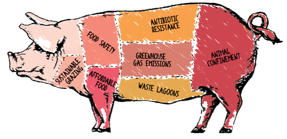 "Four Takeaways from ""The Meat We Eat: 2014 Forum on Industrial Animal Farming"""