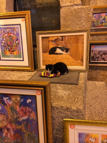 In Jerusalem's Cardo market, a painter's booth features a portrait of this black and white looker along with a soft mat and warm water bottle for the feline muse on a cold, rainy day.