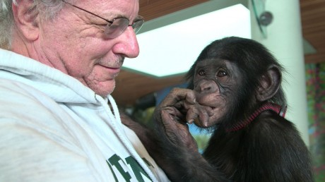 "Steve Wise of the Nonhuman Animal Rights Projects -- Photo courtesy of ""Unlocking the Cage"" by Pennebaker Hegedus Films"