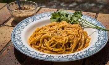 """Think! Eat! Act!"" Ruminations of a Sea Shepherd Cook (BONUS RECIPE: Vegan Roasted Pepper Cream Spaghetti)"