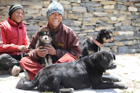 Young monks and dogs in Ngawal village