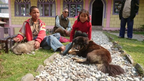 locals with their mutts in Tal village