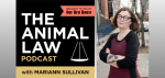 The Animal Law Podcast is Here! Episode 1, Featuring Steve Wise