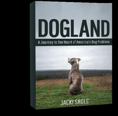 dogland-book