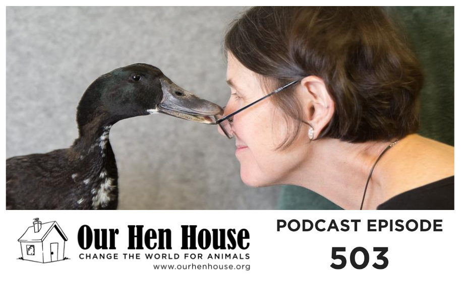Episode 503: Rita McMahon on the Joys of Bird Rehabilitation