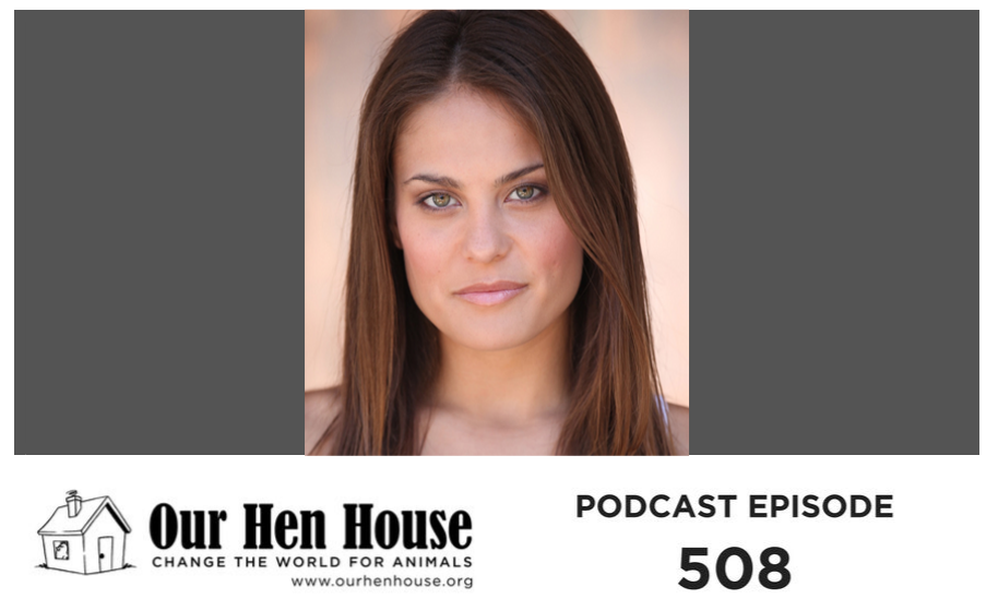 Episode 508: Amy Jean Davis on Bearing Witness for Farmed Animals
