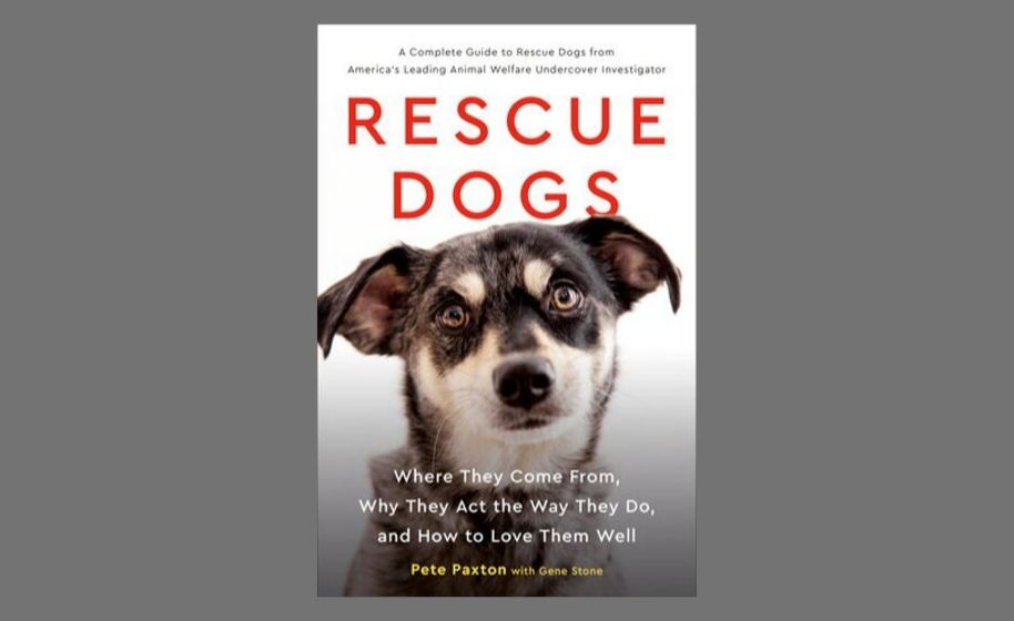 OHH Bonus Content: An excerpt from the book Rescue Dogs