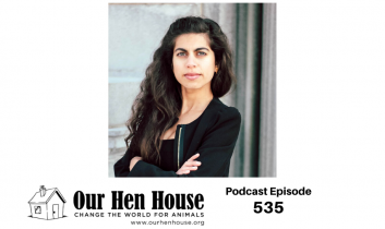 Episode 535: Aryenish Birdie on Diversity, Equity, and Inclusion