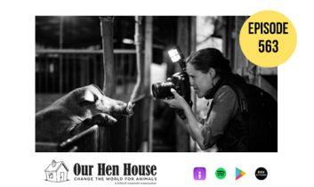 Episode 563: HIDDEN: Animals in the Anthropocene ft. Jo-Anne McArthur